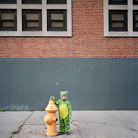 Amy Stein - Untitled Frog