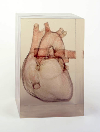 Dustin Yellin - The Heart is Only a Muscle - 2008