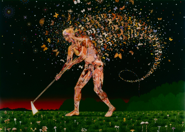 Fred Tomaselli - Field Guides - 2003