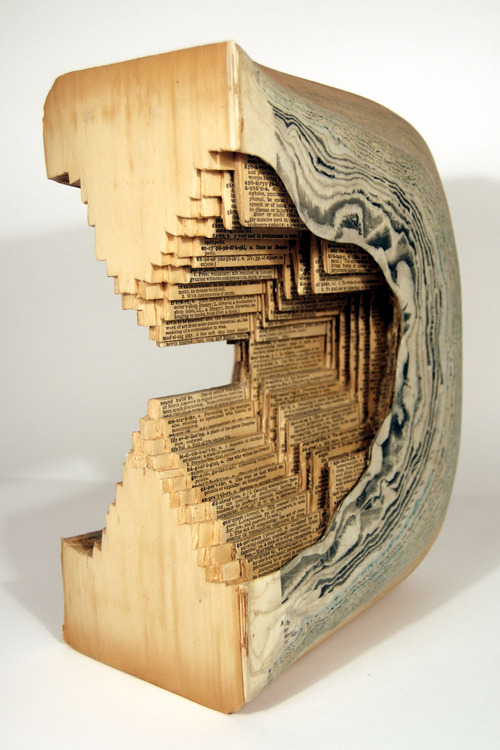 Brian Dettmer - Book Sculpture (5)