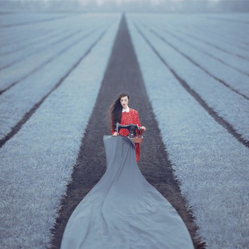Oleg Oprisco - Photography (2)