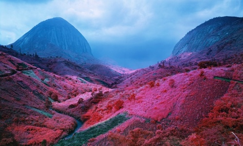 Richard Mosse - The Enclave (3)