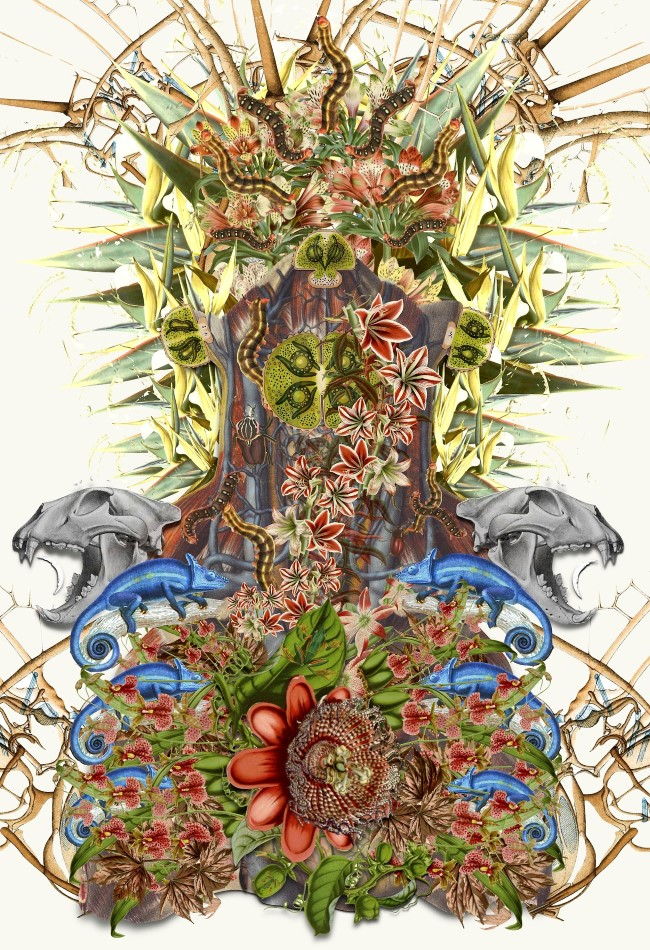 Travis Bedel - Anatomical Collage (4)