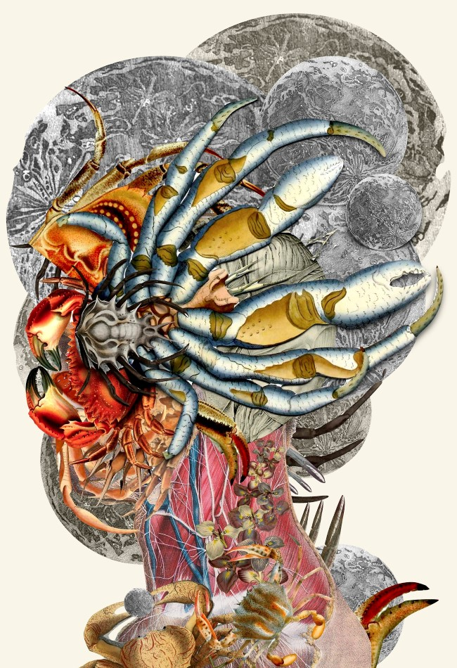 Travis Bedel - Anatomical Collage (5)
